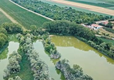 Water We Want, la rubrica di Letizia: inaugurato a Meolo il nuovo percorso digitale del Water ...