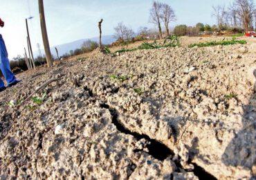 I piani per combattere la siccità a La Palma continuano nonostante il coronavirus