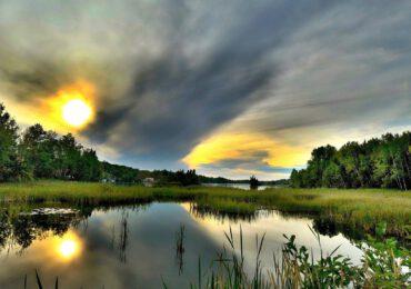 Una Giornata dell'ambiente nel segno della biodiversità