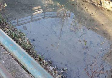 La Terra soffre, soprattutto in Italia: la denuncia dei Verdi