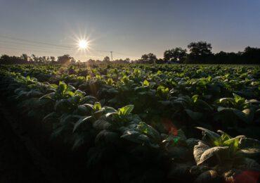 Nuovo regolamento UE acque reflue: prescrizioni minime per il riutilizzo