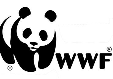 WWF, anniversario referendum <b>acqua</b> e nucleare